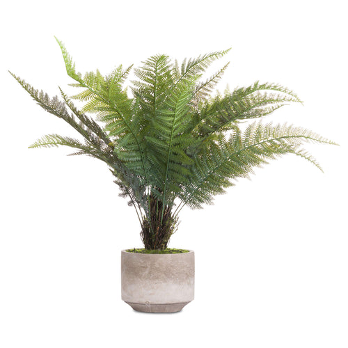 Stone Potted Boston Fern Faux Plant