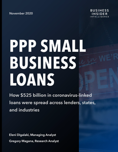 PPP Small Business Loans [11/13 UPDATE]