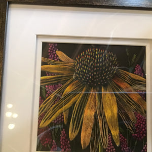 """Coneflower"" - original scratchboard (MG)"