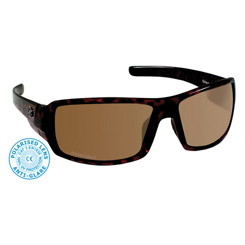 Blast sunglasses in Brown