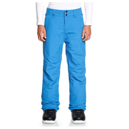 Quicksilver Estate Boys Ski Pants in Cloisonne