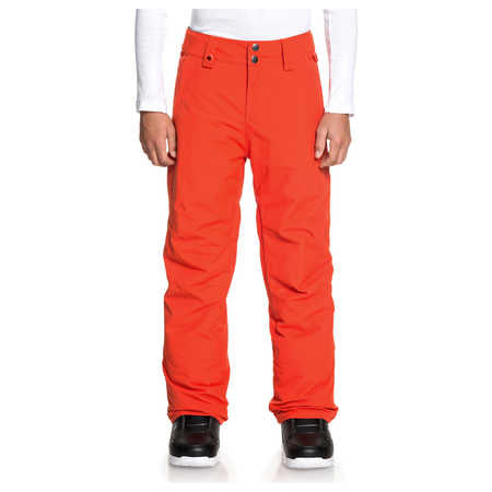 Quicksilver Estate Boys Ski Pants in Poinciana