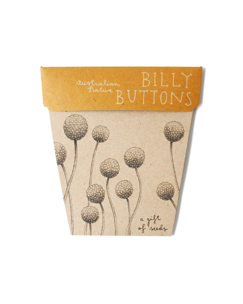 Sow 'n Sow Billy Button