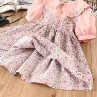 Floral Print Peter Pan Collar A-Line Dress 2Y-6Y