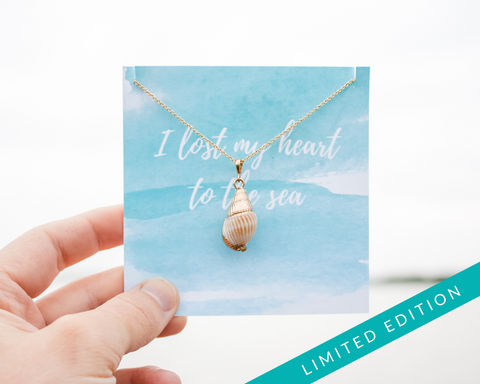 Real Sea Shell Necklace - Gold