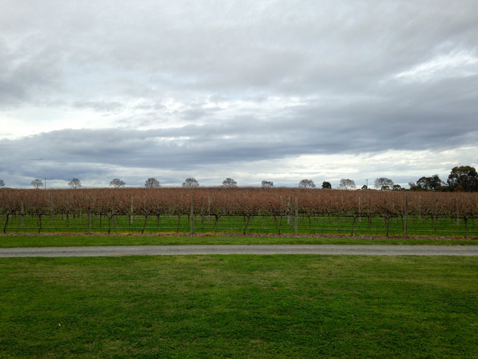 A lovers weekend in Barossa Valley