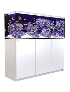 Red Sea Reefer XL525 White/Black  Auckland Free Delivery