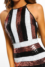Multi Stripe Sequin Mini Dress