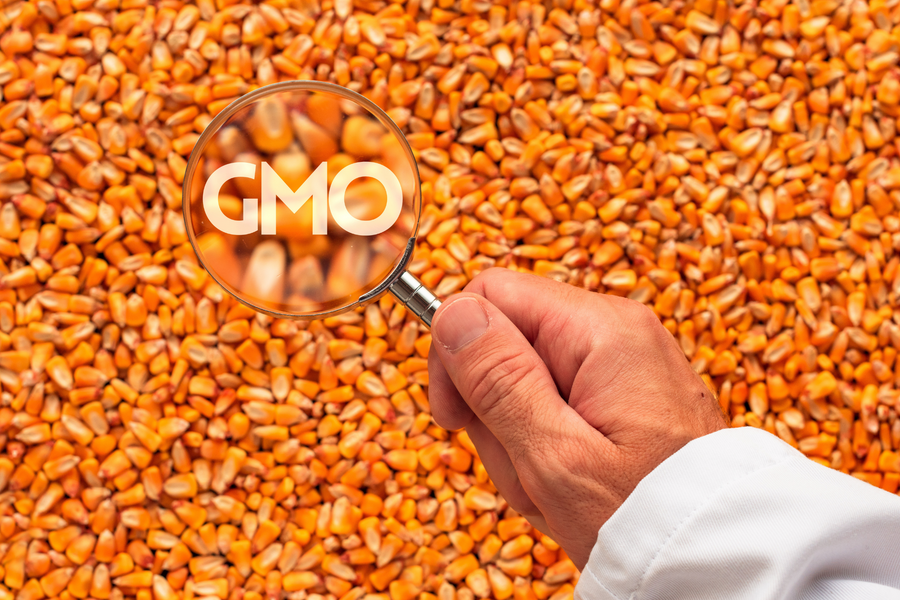 5 Myths About GMOs Busted