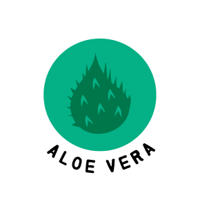 Aloe Vera Ingredients