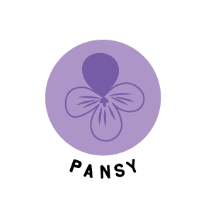 Pansy Ingredients