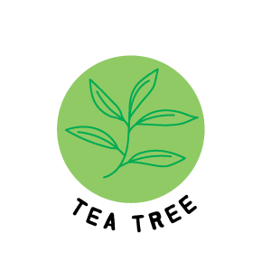 Tea tree for skin
