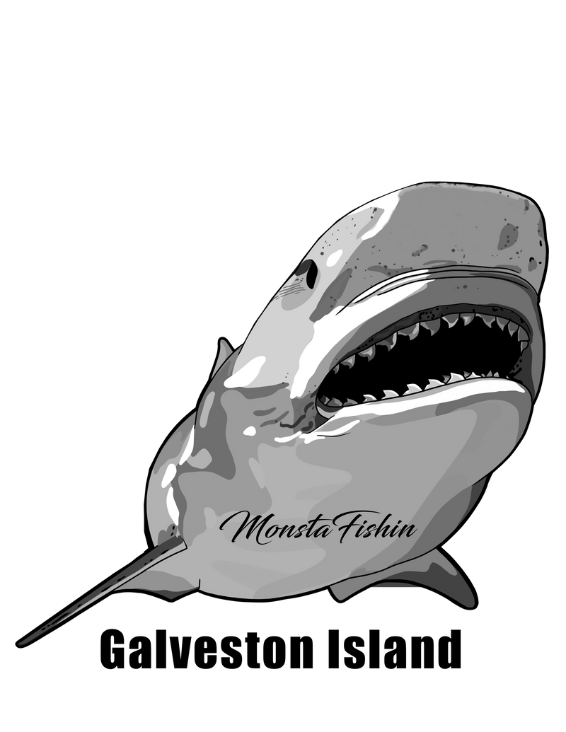 Shark Decal 5