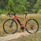 Yamaha Wabash E-Bike-Electric Bicycle-Yamaha-Small (53 cm)-Coral-Voltaire Cycles of Highlands Ranch Colorado