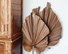Load image into Gallery viewer, Dried X - Large cut Robusta palm leaves