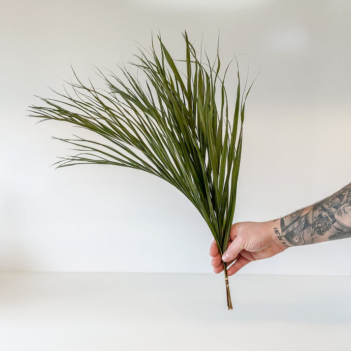 Dried golden cane palm x5