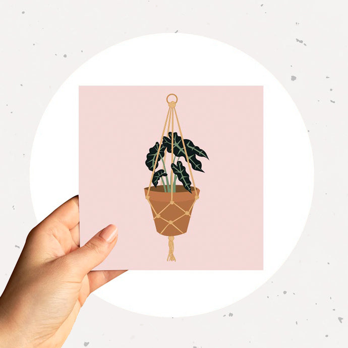 Hanging elephant ear plant card