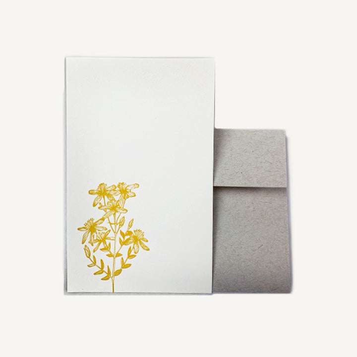 St. Johns Wort Stationery