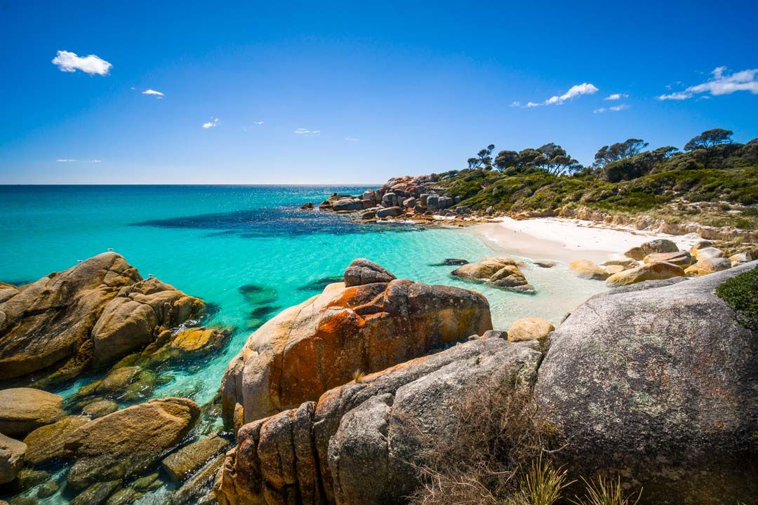Tasmanian Beach Bay of Fires