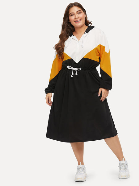 Plus Colorblock Side Drawstring Waist Hooded Dress