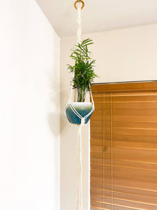 Twisty Hanging Planter