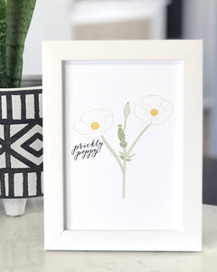 Prickly Poppy Wildflower Art Print- 5x7 inches