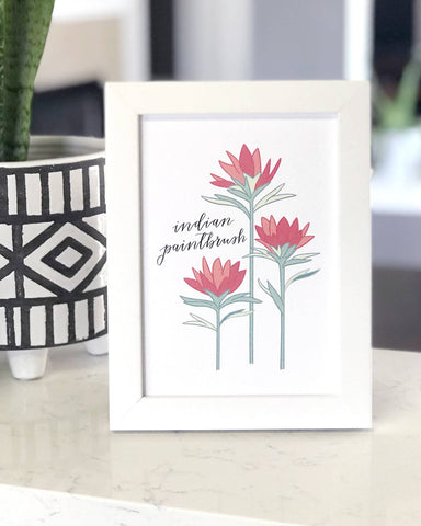 Indian Paintbrush Flower Hand Illustrated Wall Art Print
