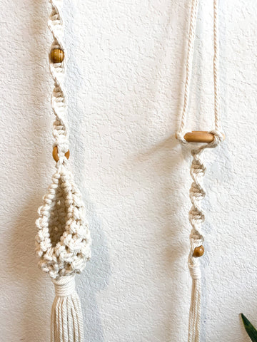 Air Plant Hanging Planter Duo