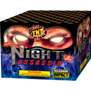Night Assassin