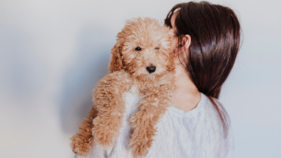 Best Dog-Mom Gifts this Mother's Day-Bonne et Filou