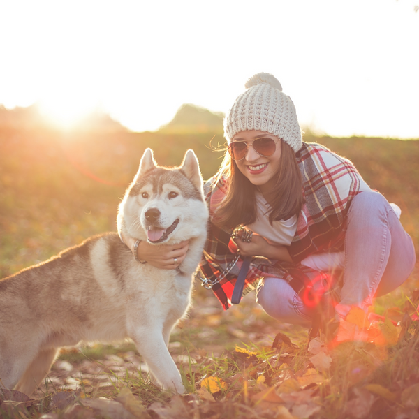 THESE FALL FAVORITES COULD HAVE A NEGATIVE EFFECT ON YOUR DOGS HEALTH-Bonne et Filou