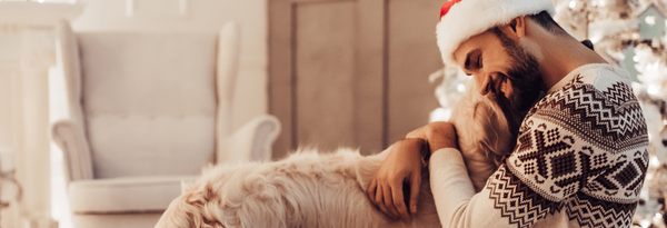 THE 7 BEST STOCKING STUFFERS FOR THE DOG IN YOUR LIFE-Bonne et Filou
