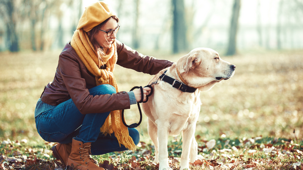 The Best Ways To Spend Fall With Your Dog-Bonne et Filou