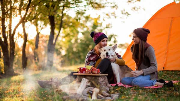 Dog-friendly Places In New York To Enjoy Fall With Your Pup-Bonne et Filou