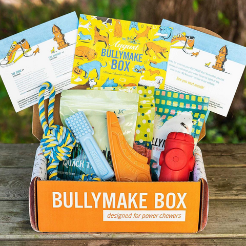 Bully Monthly Dog Box