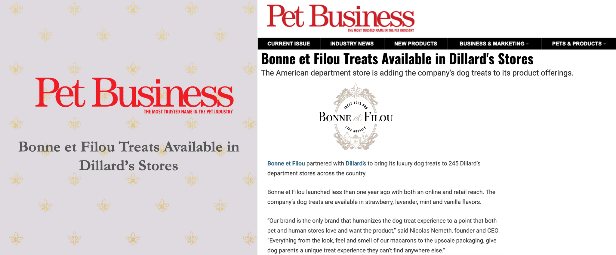 Pet Business - November 2020
