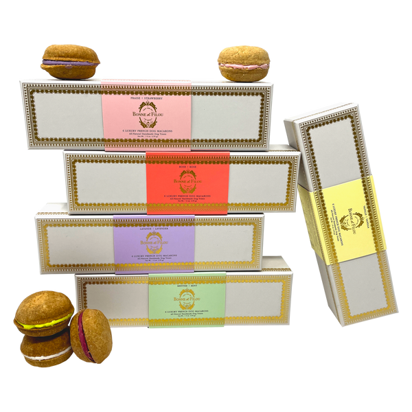 Dog Macaron Club - 6 Months Gift Subscription - Bonne et Filou