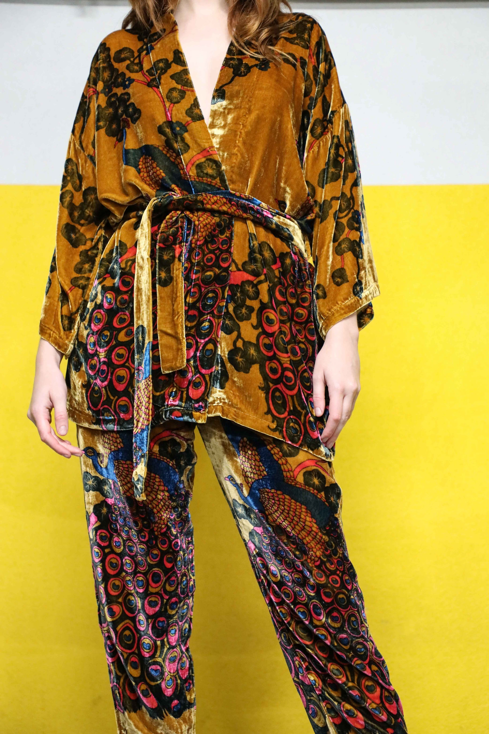 Pavo Velvet Multicolor Print Pants