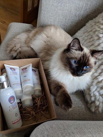 Billy and Belle Cat with Organic Skin Care
