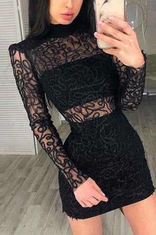 Black Lace Turtleneck See Through Bodycon Dress