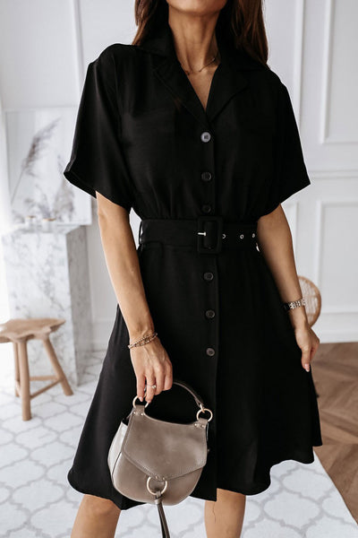 Button Down A-line Lapel Dress With Belt
