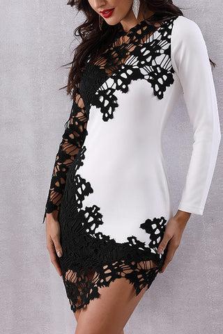 produkte / zweifarbige-Spitze-Patched-Cut-Out-Bodycon-Dress.jpg