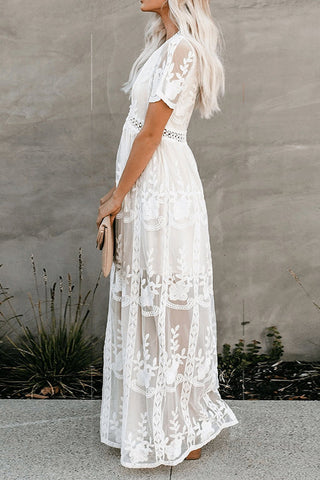 products / chic_see-through_lace_dress_4.jpg