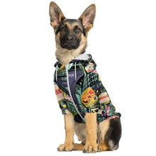 Load image into Gallery viewer, BERLIN Color Design Dog Sweater