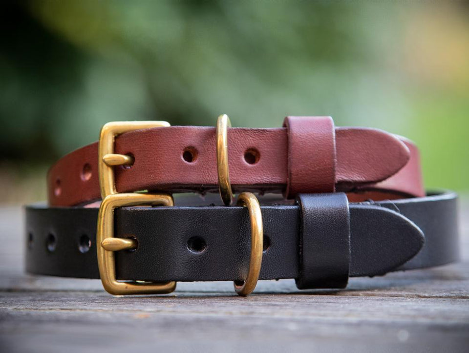 Leather & Rope Dog Collars