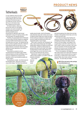 Tetherleads leather oxford lead and slip collar featured in Sporting Shooter