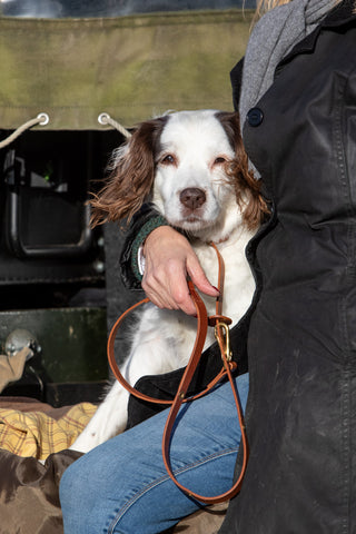 Dog owner cuddling dog in back of landrover with brown leather dog lead