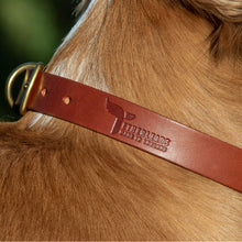 Load image into Gallery viewer, Tan Leather Dog Collar