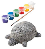 ALEX Toys Craft Rock Pets Turtle lets you paint and personalize your own terrific tortoise