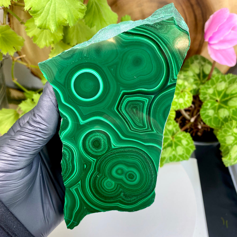 Malachite Polished Double Sided Slab from the Congo Region with FREE Display Stand - Perfect for Collectible Mineral Display and Home Décor